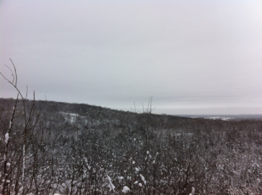 View of the Gatineau Park from one of the climbs.
